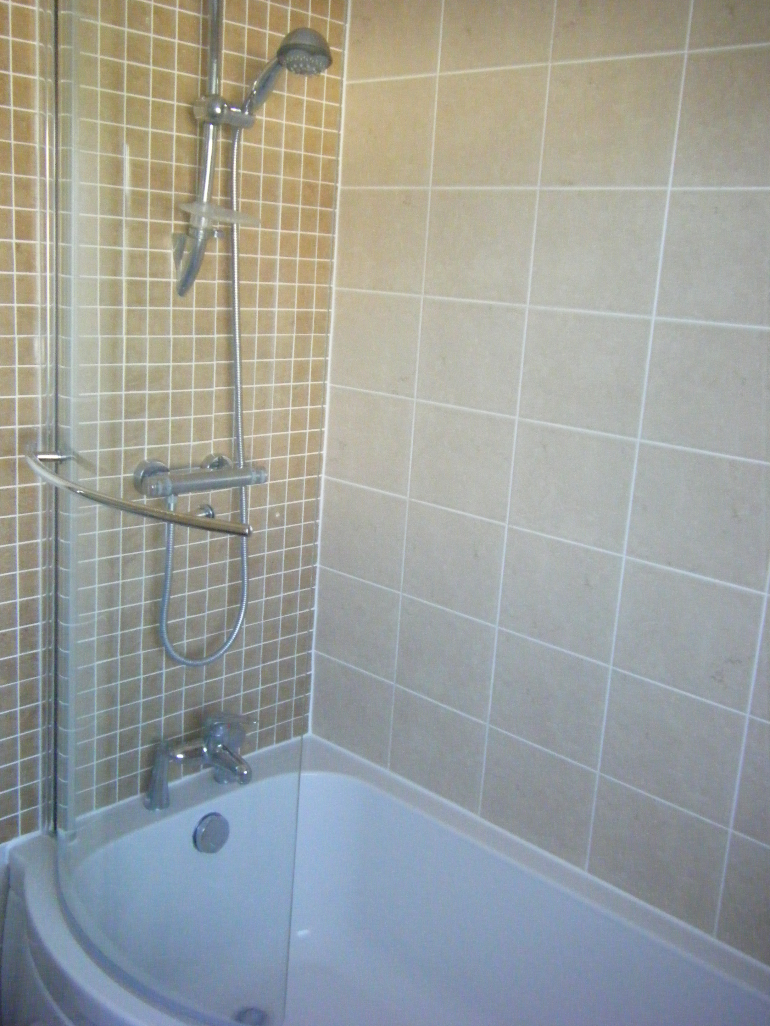 Bath and shower in small bathroom